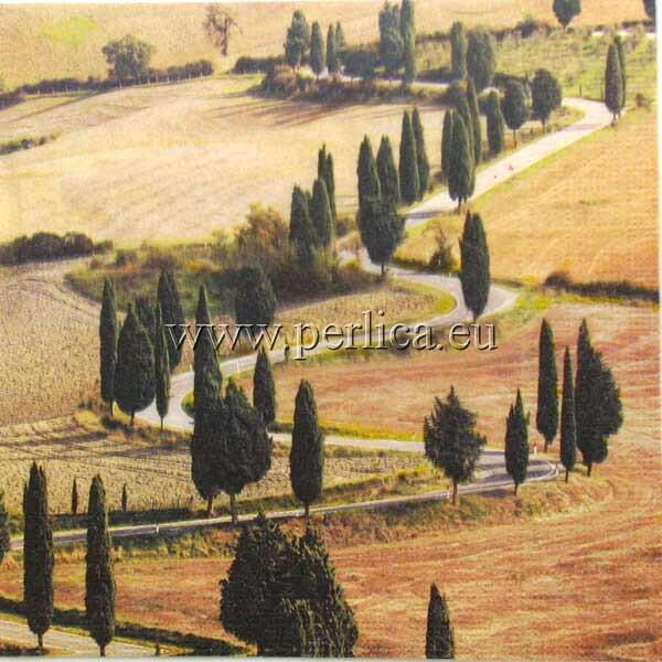 Salveta  Toscana SP3