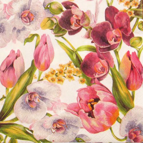 Salveta Tulipani i orhideje C31