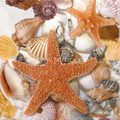 Zvijezda iz 5000