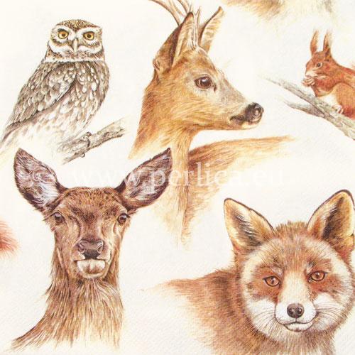 """Salveta """"Forest Animals"""" creme,ZS2"""
