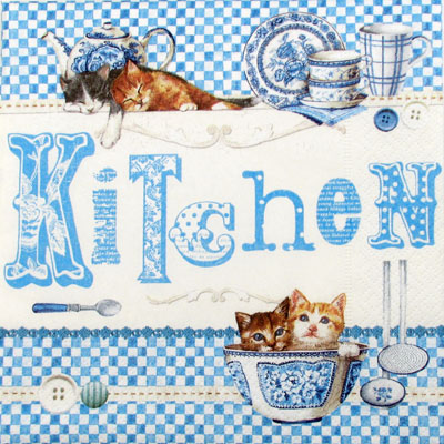 Salveta Blue Kitchen ZC1