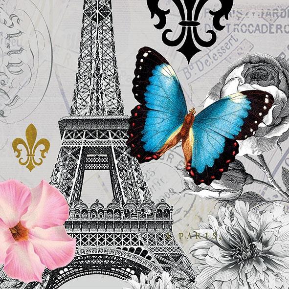 Salveta Ici Paris J14