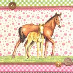 Konji-3