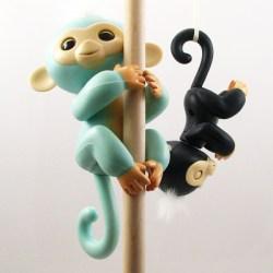 Majmncic-2