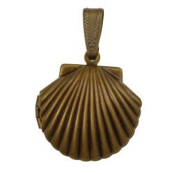 Medaljon-skoljka-2