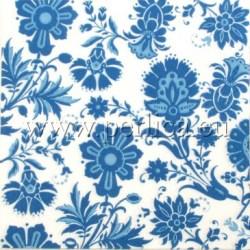 Plavo-bijele