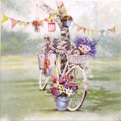 Salveta-Bicikla