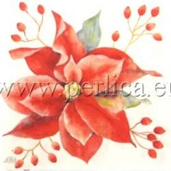 Salveta-Poinsettia-4