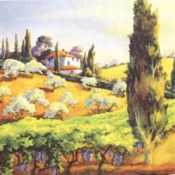 Salveta-Toscana