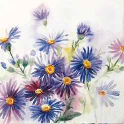 Salveta-cvijece-plavo
