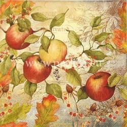 Salveta-jesen-jabuke