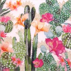 Salveta-kaktus2
