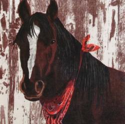 Salveta-konj