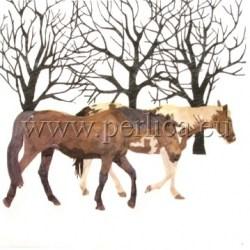 Salveta-konji-u-zimi