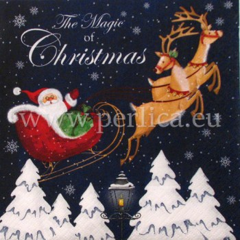 Salveta-magic-of-christmas (1)
