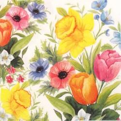 Salveta-proljetnocvijece