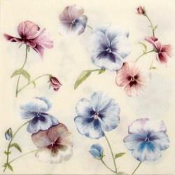 Salveta-viole-3