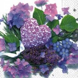 Salveta_4ca8bd9f9aaac.jpg