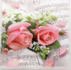 Salveta_Cvijetna_50ec862e8550f.jpg