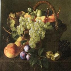 Salveta_Fruits_W_50101c37a19f4.jpg