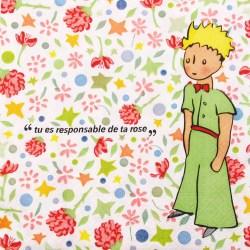 Salvete-Mali-princ-cvijece
