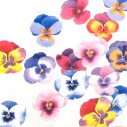 Salveta_Swarm_of_pansies.jpg