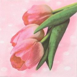 Salveta_Pet_tulipana.jpg