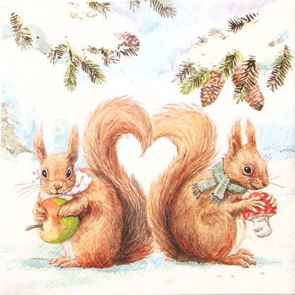Salveta Squirrel love ZI11
