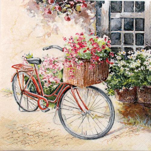 Salveta Flower bike, C2