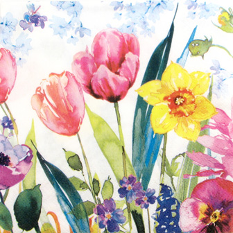 Salveta Aquarell Springflowers C7